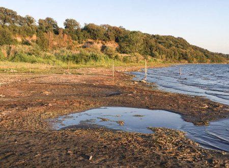Situazione del Lago di Bracciano: bene ma non benissimo!